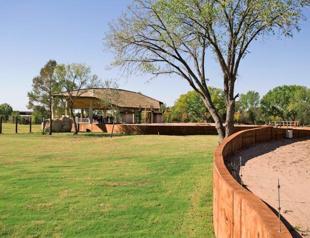 Sedgwick County Zoo Elephants of the Zambezi River Valley